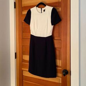 J. Crew Sheath Dress